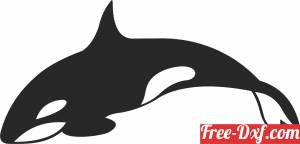 download Orca wall design fish clipart free ready for cut