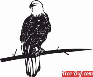 download bald eagle on a branche wall art free ready for cut